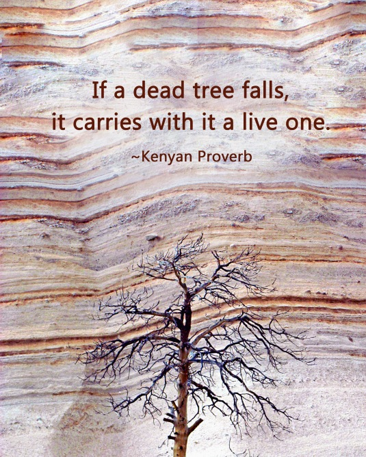 Kenyan Proverb about trees.