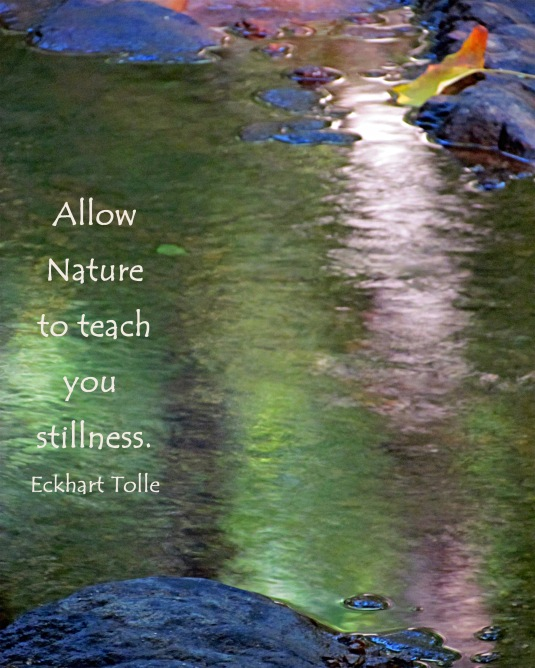 Nature reflections in water and quote by Eckhart Tolle.