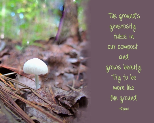 Nature quote by Rumi