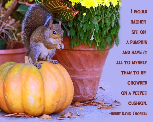 Henry David Thoreau quote about sitting on a pumpkin.