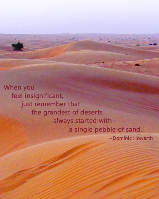Quote about the desert and a pebble of sand.