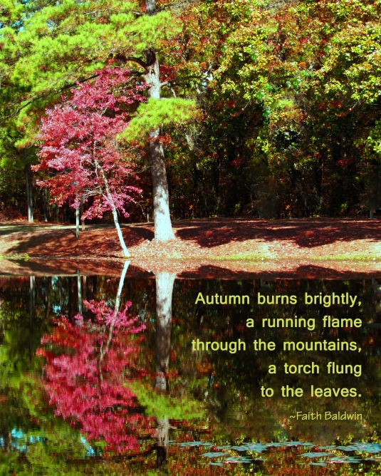 Nature quote about autumn.