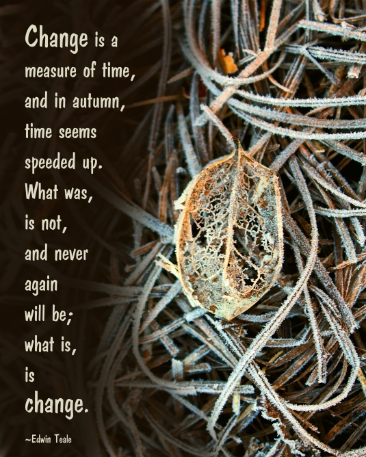 Fall quote about change.