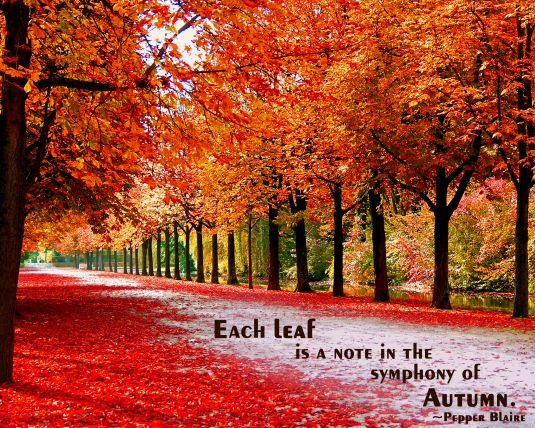 Fall leaf nature quote.