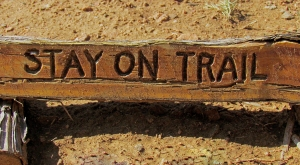 Sign:  Stay on the Trail