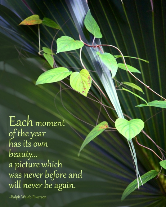Ralph Waldo Emerson nature quote.