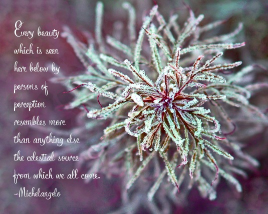 Nature quote by Michelangelo