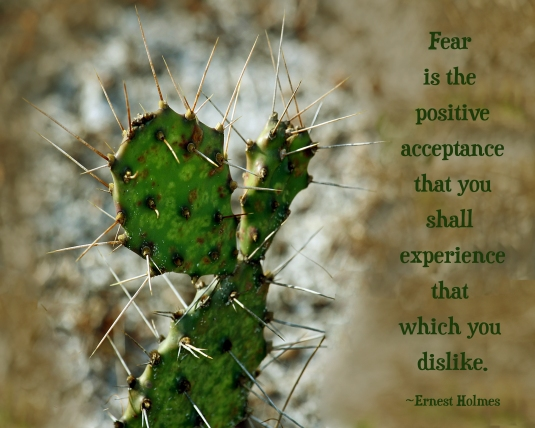 Inspirational quote about fear.