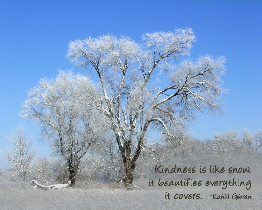 Kahlil Gibran quote about kindness.
