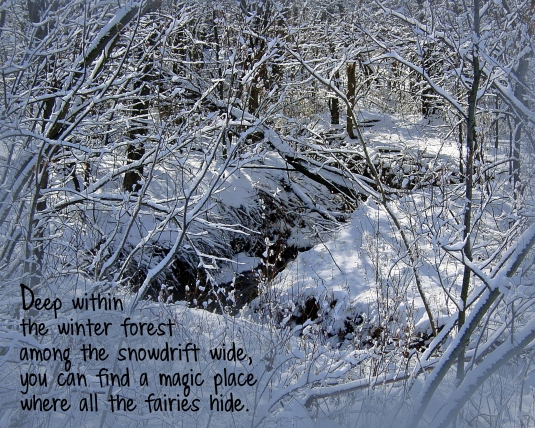 Snowy woods quote