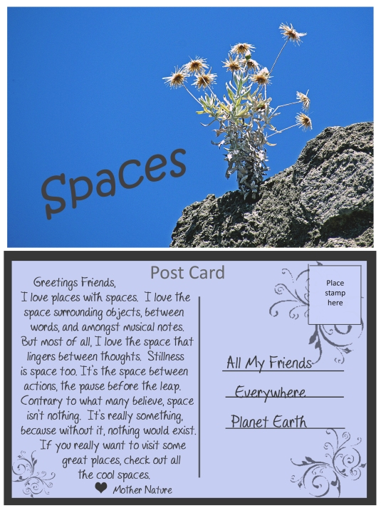 Noticing and appreciating the spaces in our lives.