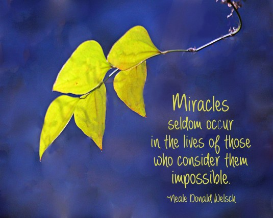 Quote about miracles