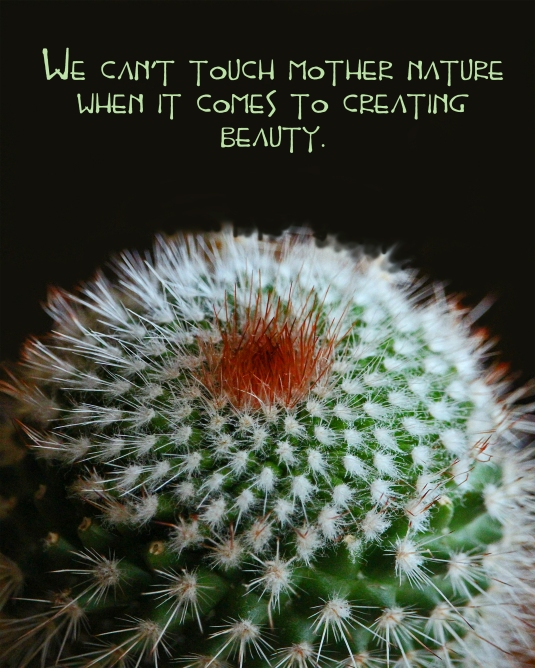 Quote about the beauty of Mother Nature