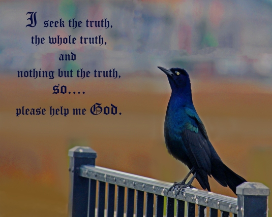 Inspirational quote about seeking only the truth.