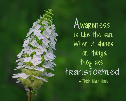 Quote about awareness from Thich Nhat Hanh
