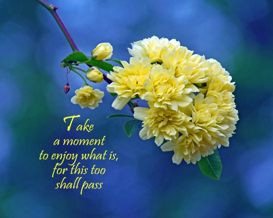 Inspirational quote about how quickly each sacred moment passes.
