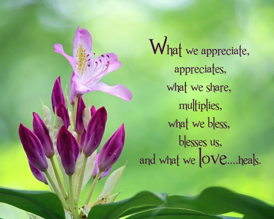 Inspirational quote about appreciation, sharing, blessing, and loving.