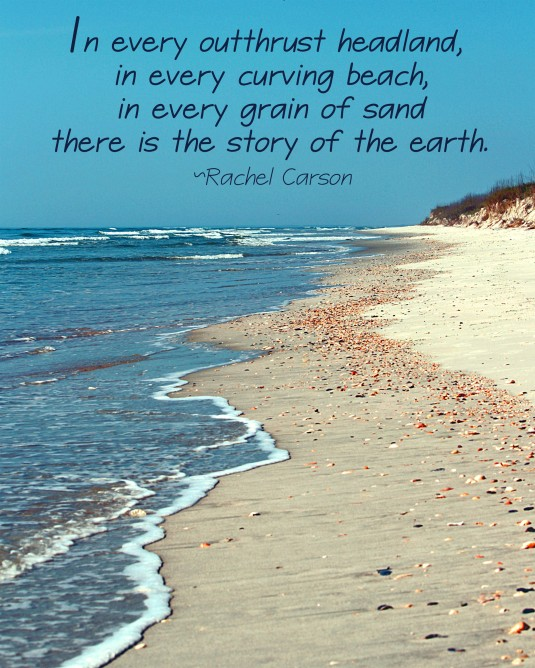 Nature quote about the beach.