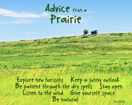 Advice from a Prairie