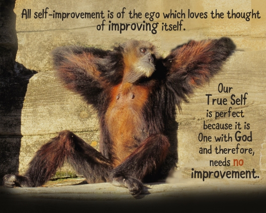 Inspirational quote about our lack of need for self-improvement.