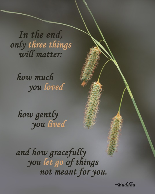 Buddha quote about the only three things that really matter.