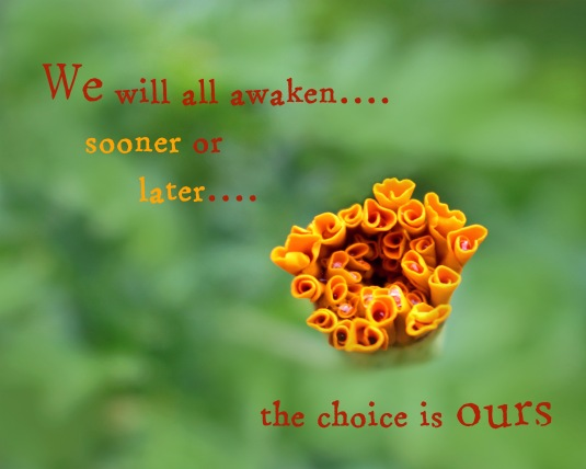 Mindfulness quote about our eventual awakening.