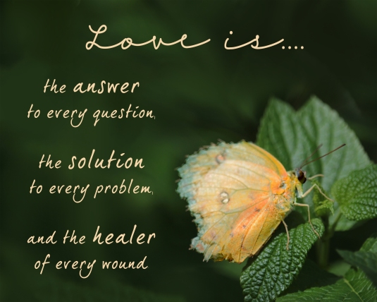 Love is the answer to every question, the solution to every problem, and the healer to every wound.