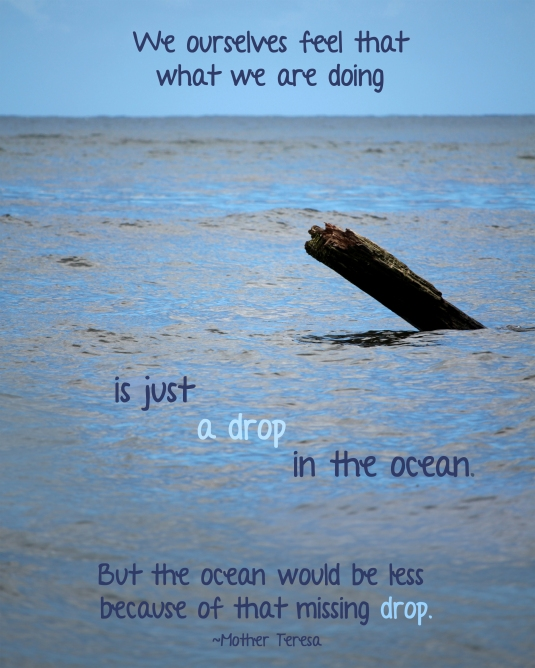 Mother Teresa quote about a drop in the ocean.