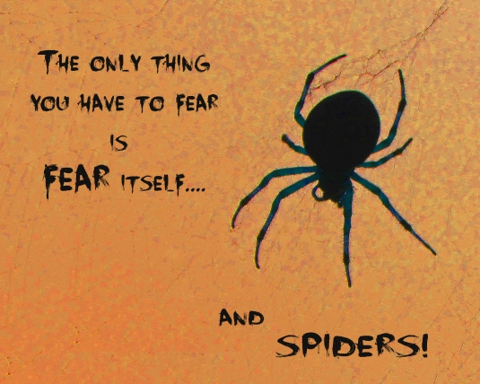 Halloween quote about fear and spiders.