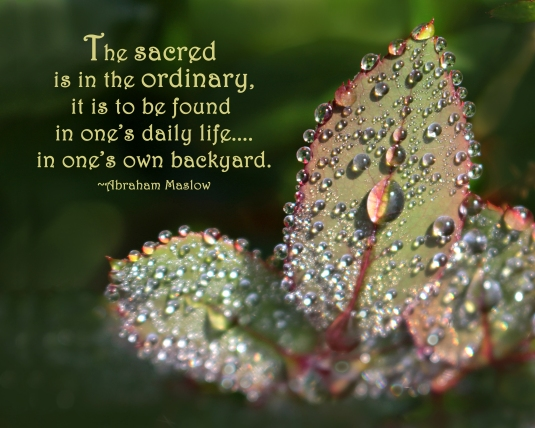 Abraham Maslow quote about the sacred being in the ordinary.