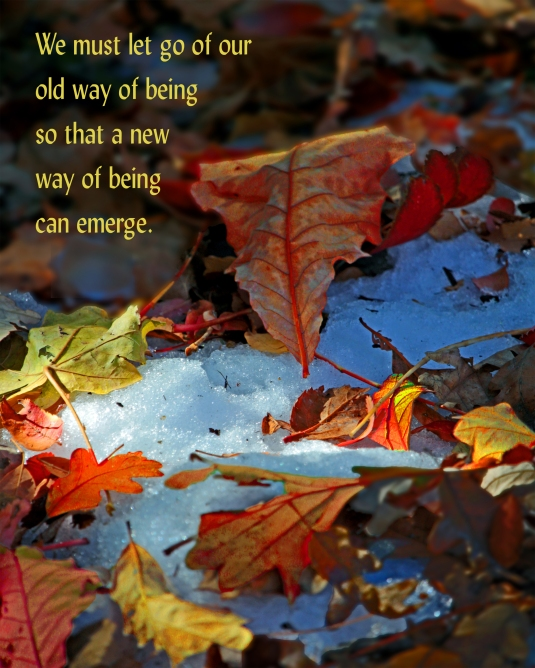 Mindfulness quote about letting go of the old so that the new can emerge.