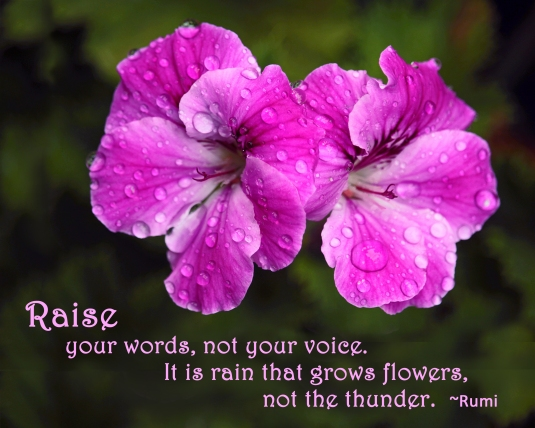 Rumi quote about raising our words, not our voices.