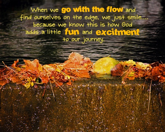 Mindfulness quote about going with the flow and being on the edge.