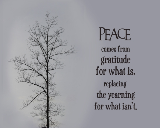 A mindfulness quote about peace and gratitude.