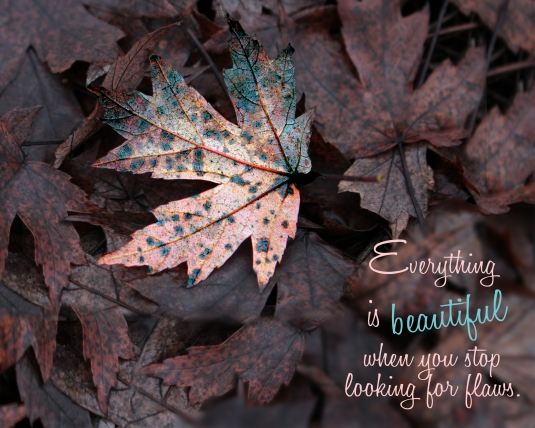 Inspirational quote about beauty.