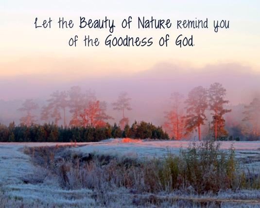 Nature quote about the beauty of Nature and the goodness of God.