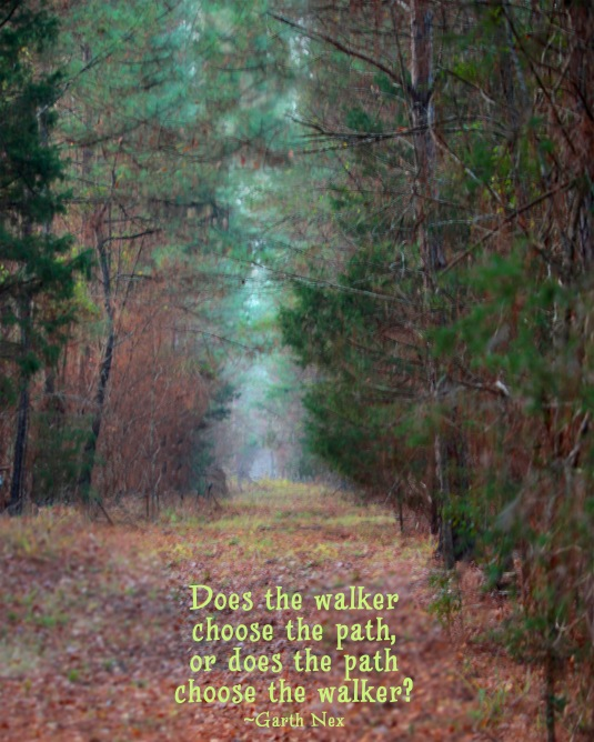 Inspirational quote about the path we walk.