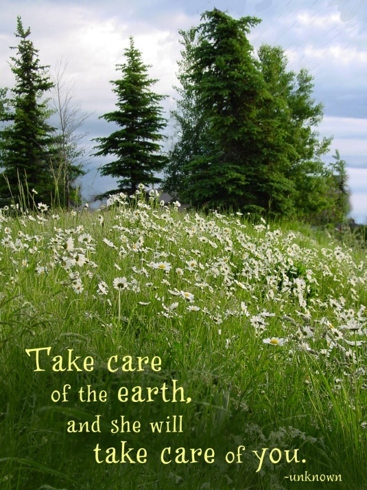 Nature quote about taking care of our earth.