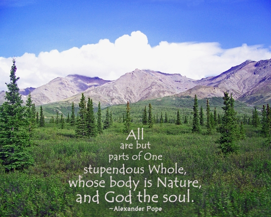 Nature and spirituality quote by Alexander Pope.