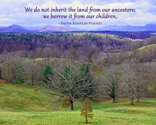 Native American Proverb about taking care of the land.