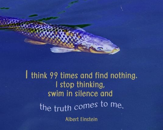 Albert Einstein quote about finding truth in silence.