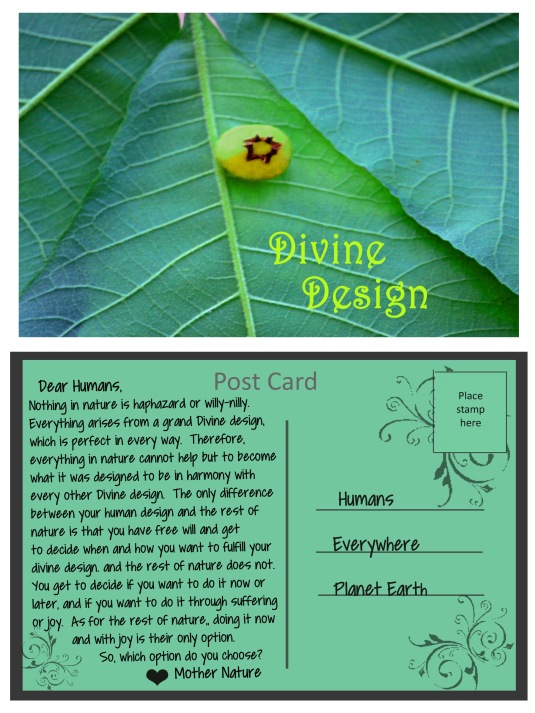 A post card from Mother Nature about fulfilling our Divine design.