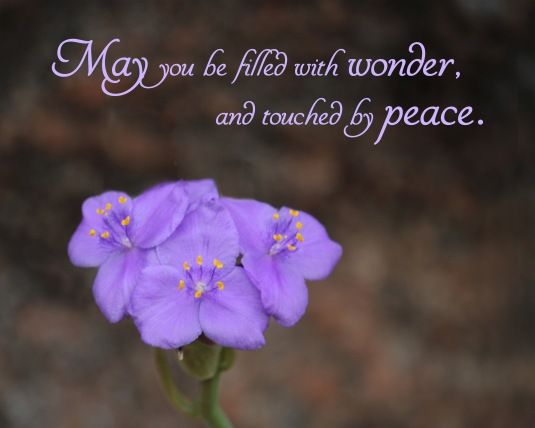 A blessing: May you be filled with wonder and touched by peace.