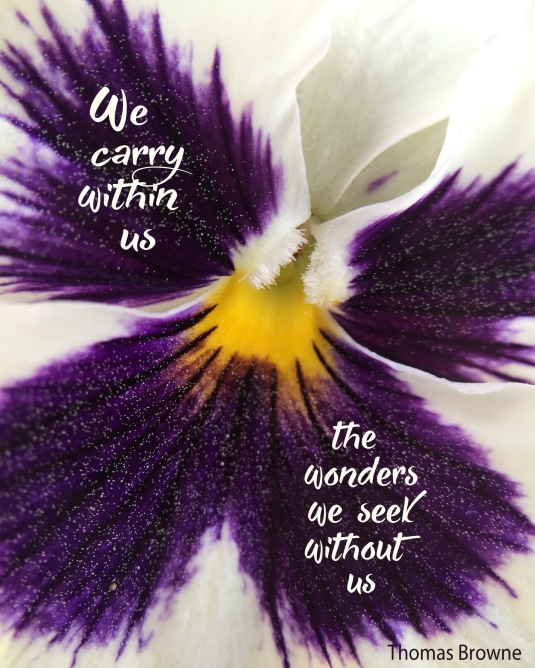 An inspirational quote by Thomas Browne about the wonders within us.