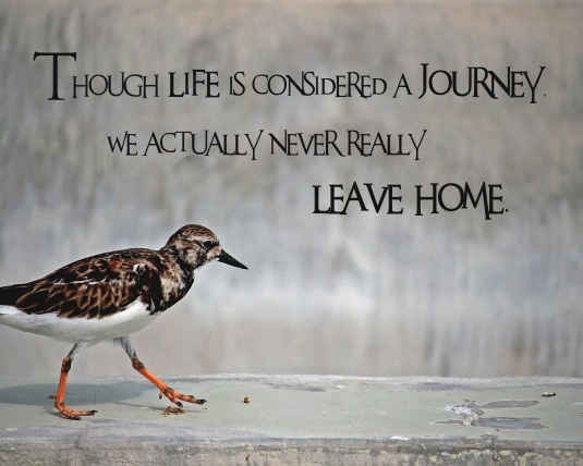 An inspirational quote about the journey of life.