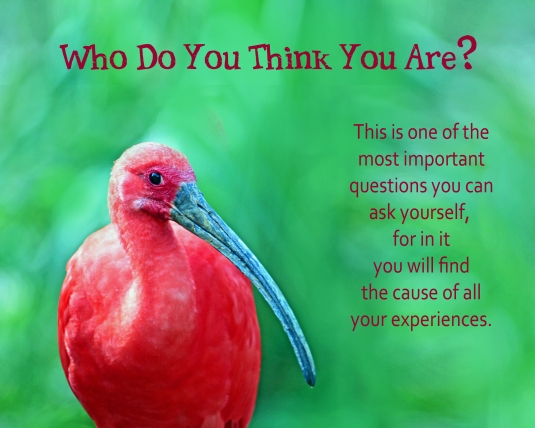 A question to ask yourself: Who do you think you are?
