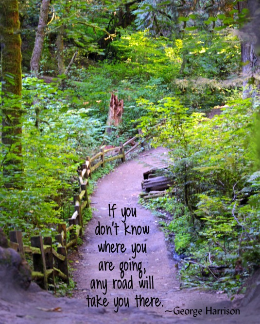 Quote by George Harrison about knowing where you are going.