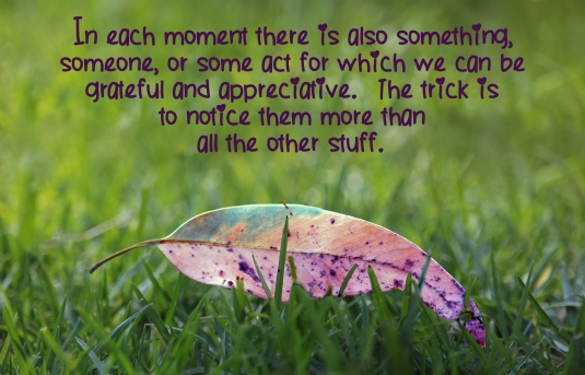 Inspirational quote about finding some reason to be grateful in each moment.