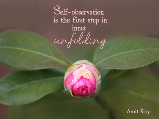 Amit Ray quote about self-observation and inner unfolding.