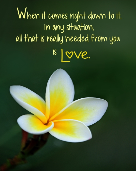 An inspirational quote about responding with love.